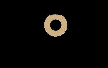 logotipo do projeto the body can (@thebodycansee) see de Renato Rodrigues (@renato_rodrigues) da escola Gracie Barra Vittorio Roma (@graciebarraroma)